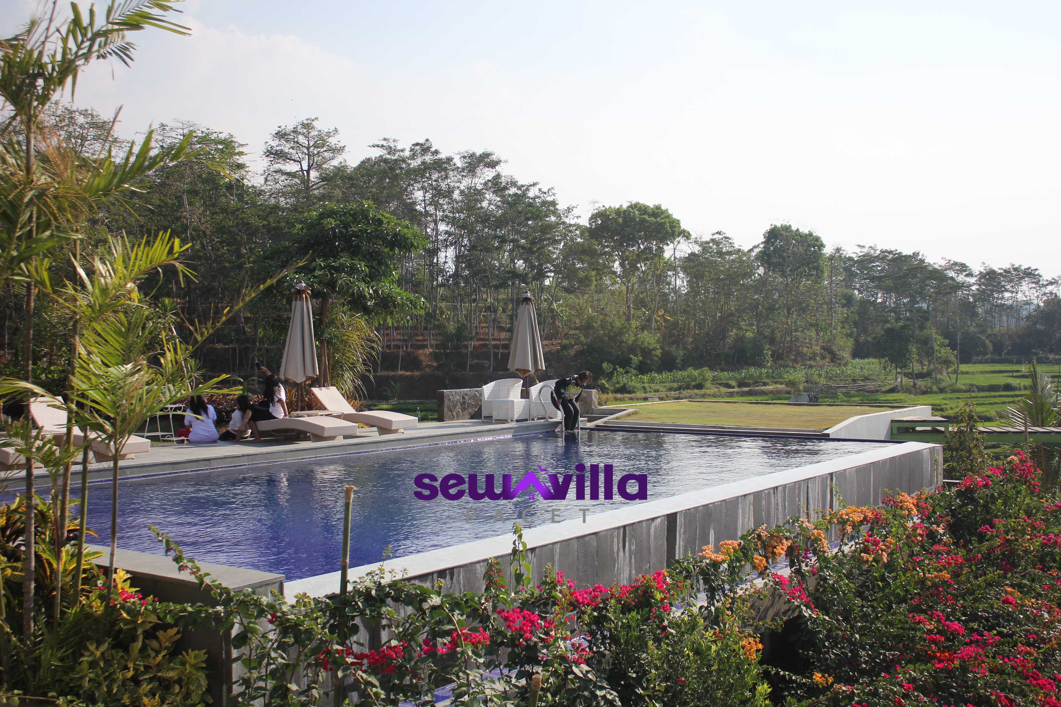 Kolam renang villa HMD Trawas menghadap pemandangan indah