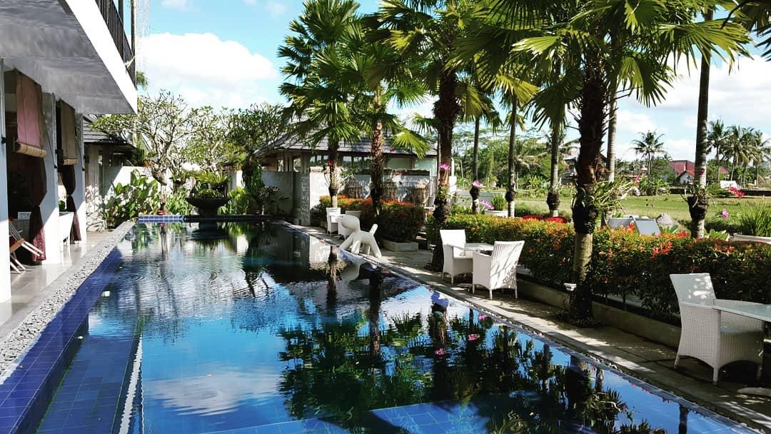 villa kolam renang murah jogja